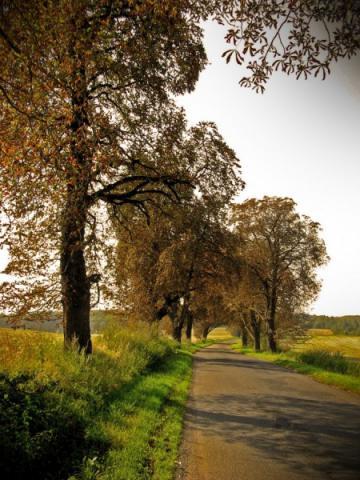 Droga wzdłuż autostrady, autor: vanhelsing