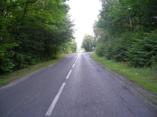 W lesie, autor: bikerrr