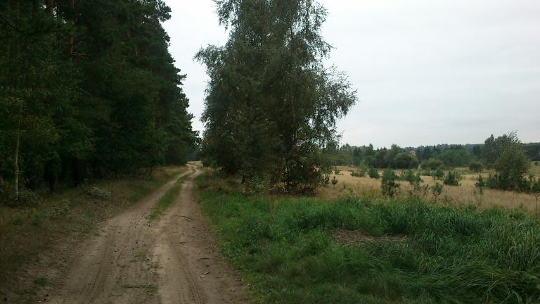 Szczecin - Jezioro Miedwie inaczej - MojRower.pl