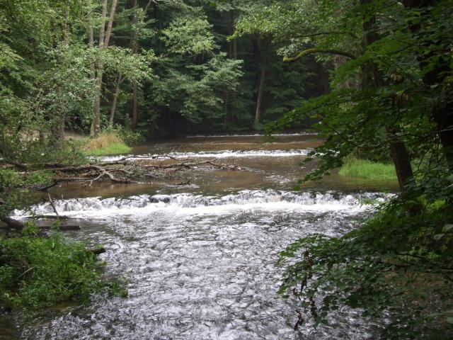 Rzeka - MojRower.pl