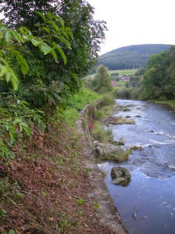Rzeka Ropa koło zamku, autor: bikerrr