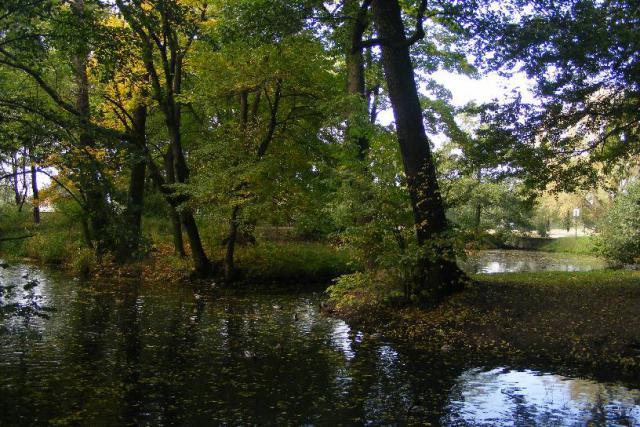 Park na Słocinie, autor: azbest87