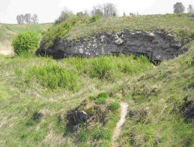 Fragment rezerwatu Skorocice, autor: yacek