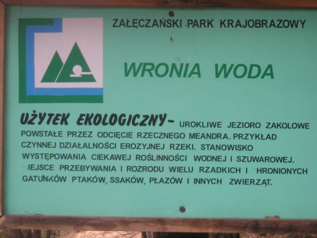 """Użytek ekologiczny """"Wronia Woda"""", autor: yacek"""