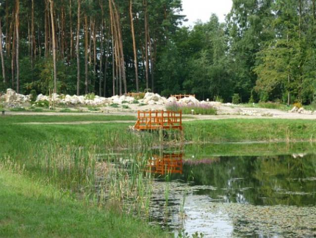 Ogród dendrologiczny, autor: yacek