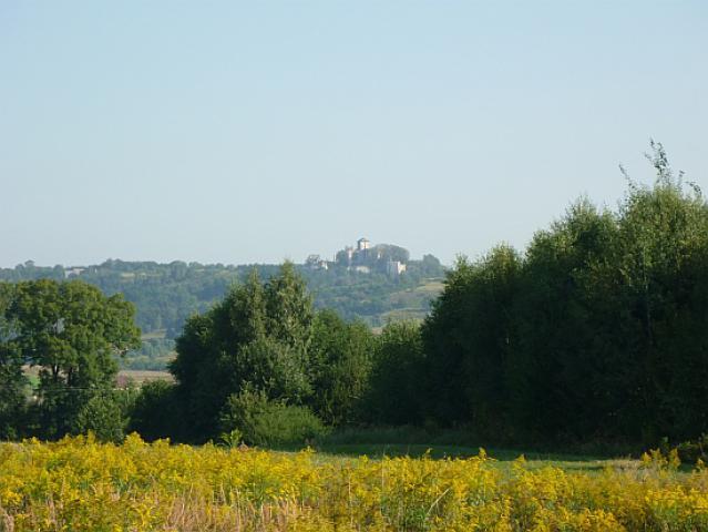 Widok z zielonego szlaku rowerowego na ruiny zamku Tenczyn, autor: yacek