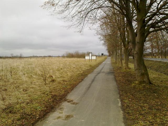Ścieżka rowerowa tuż przed wjazdem do Mielna, autor: tymooteusz
