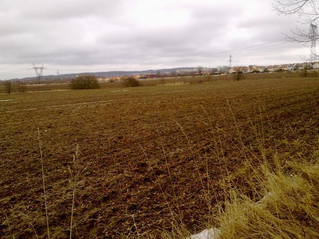 Widok na Koszalin ze ścieżki rowerowej Koszalin - Mielno, autor: tymooteusz