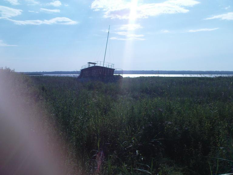widok z wału przeciwpowodziowego j.dąbie, autor: Krzysztof Z