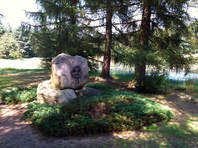 Arboretum, autor: shrek