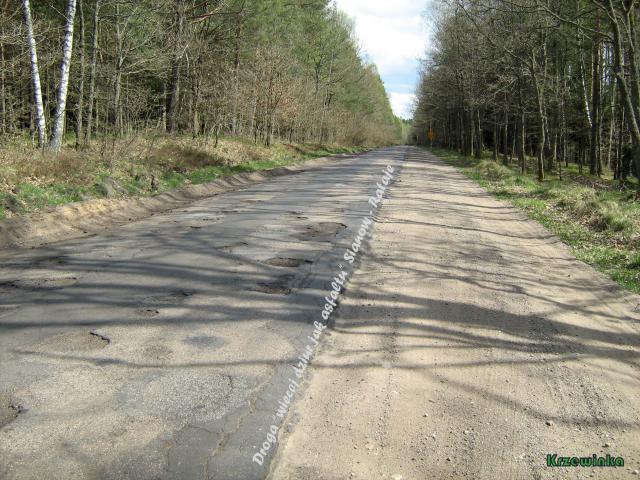 Droga do Ratajek - MojRower.pl