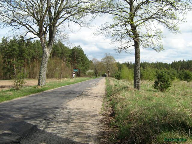 Ratajki - MojRower.pl