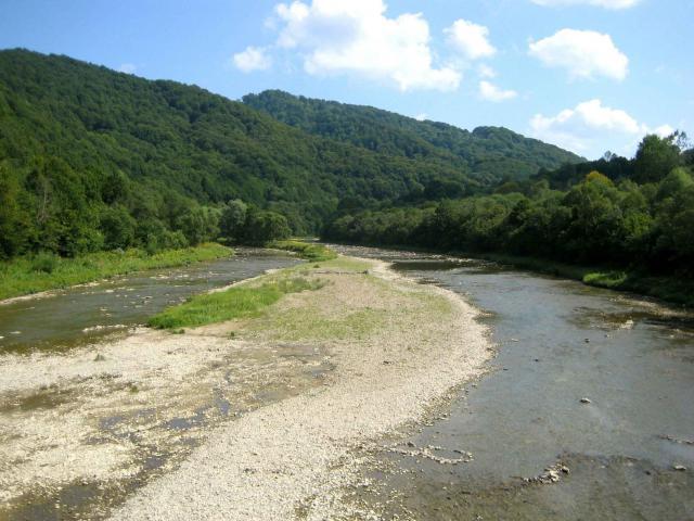 San w Rezerwacie Krywe, autor: mrozin