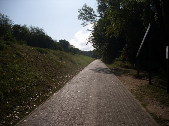 Kolpinsee - ścieżka rowerowa.      [foto: piotr-56] - MojRower.pl