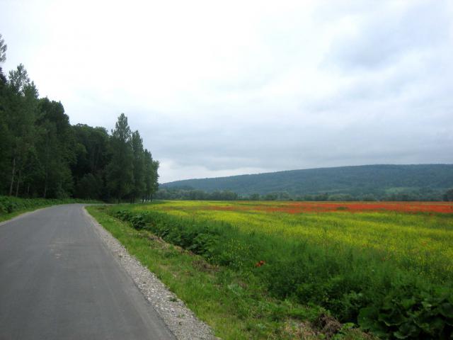 Wzdłuż Sanu - MojRower.pl