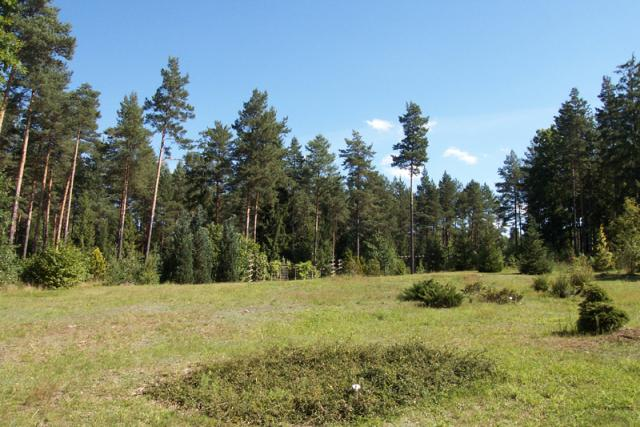Arboretum - MojRower.pl