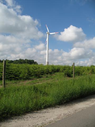 Elektrownia wiatrowa, autor: srk23