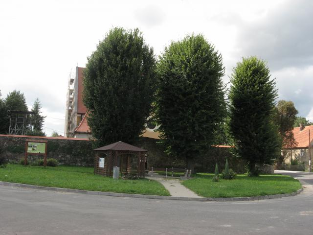 Miejsce odpoczunku w Wirach - MojRower.pl