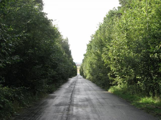 Zjazd ze Ślęży - MojRower.pl