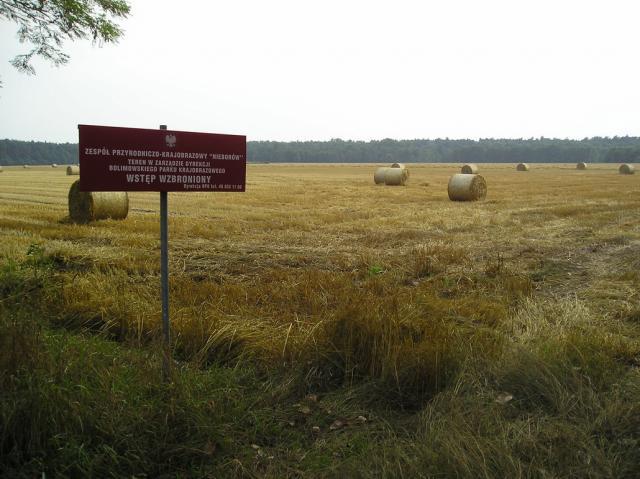 Bolimowski Park Krajobrazowy, autor: tomikor