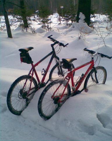 Zimą stojaki niepotrzebne ;), autor: pawelk84