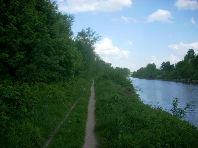 Nad kanałem, autor: robertrobert