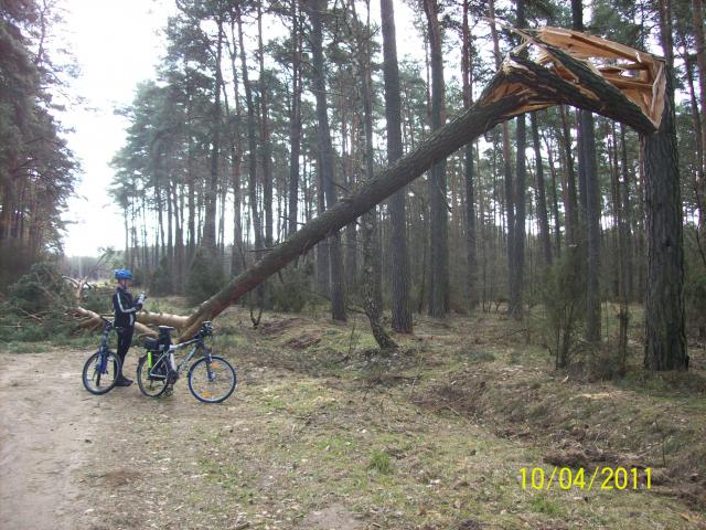 ...co potrafi wiatr... - MojRower.pl