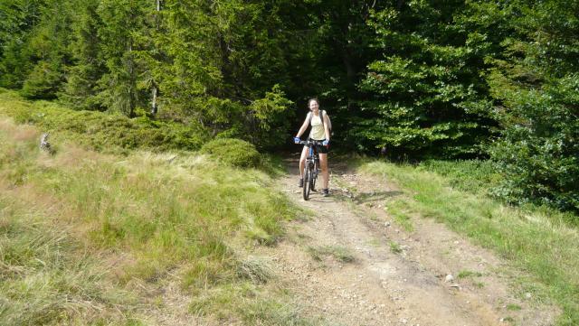 "Wyjście z leśnej trasy na ""Beskidku"", autor: konstruktor3d"