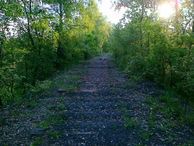 Stary nasyp kolejowy - wyzwanie dla nóg i roweru, autor: sebas