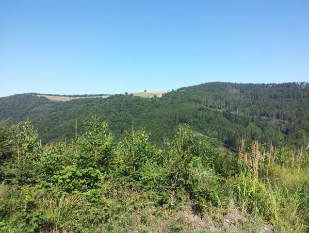 Widok na Halę Jaworową z drugiej strony :)