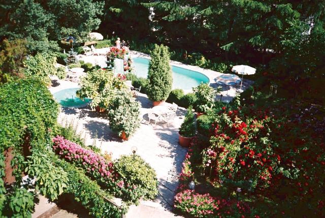 JERMIR ogród, autor: jermir