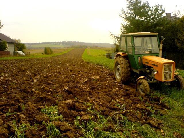 Traktor i pola przy głównej drodze, autor: vanhelsing