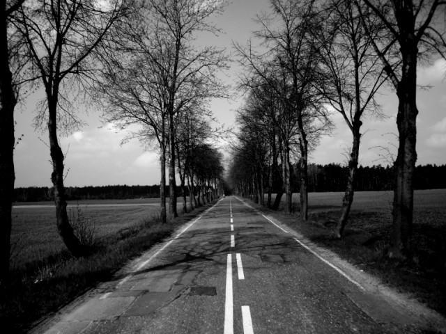 W drodze do Bojszów, autor: bikerrr