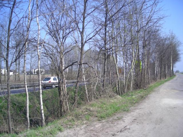 Zjazd obok trasy europejskiej E75, autor: bikerrr